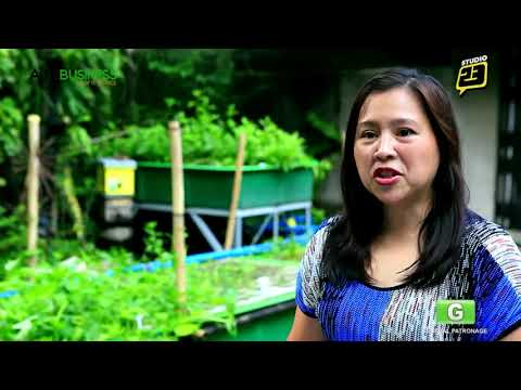 MADE Aquaponics Philippines Part 1 of 2
