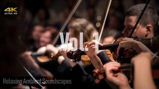 Relaxing Classical Music (Vol.1) Hi-Res 24-bit 192kHz FLAC Audio