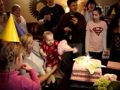 Camille's 1st Birthday Party Video