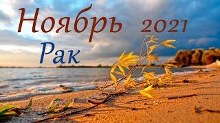 Рак Ноябрь 2021 Таро прогноз