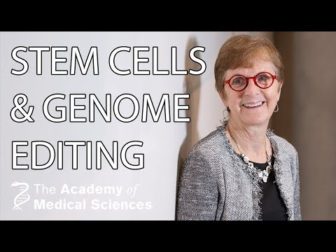 Stem Cells And Genome Editing | Professor Janet Rossant FRS