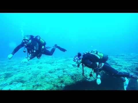 Scuba Diving In Ponta Malongane, Mozambique 2017