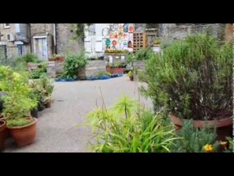 Creating healthy places: Dalston Eastern Curve Garden