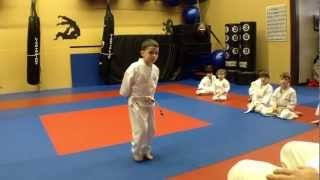 A Typical Children's Karate Class (ages 4-7) at Arashi Do Martial Arts(Want your child to have the great benefits associated with the Martial Arts but not sure what to expect. Watch this video to see a typical class by our professional ..., 2012-03-28T00:24:33.000Z)