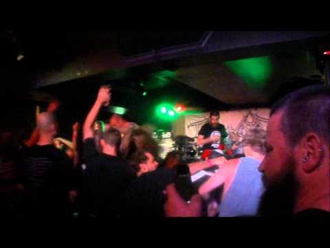 KING PARROT MIAMI SHARKS BAR GOLD COAST 15/11/13