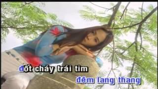 Karaoke Meo hoang   Truong Vu