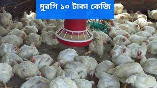 এখন মুরগির কেজি ১০টাকা!! || 10 taka kg of chicken