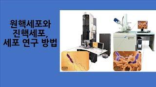 생명과학2 강의07 원핵세포와 진핵세포, 세포 연구 방…