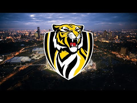 AFL Richmond Tigers 2017 Premiership Recap