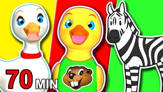 Animal ABCs + More | Collection Of Animals Songs, Childrens Finger Family Cartoon Nursery Rhymes