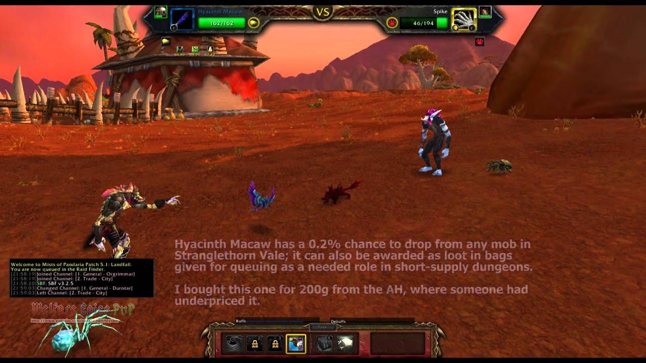 WoW MoP Pet Battles 5 2: Versus Zunta (Durotar)