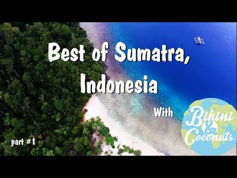 Best of Sumatra, Indonesia 2017 (Padang - Kerinci - Bukitlawang)