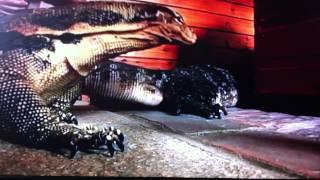 Britain's Strangest Pets [trailer]