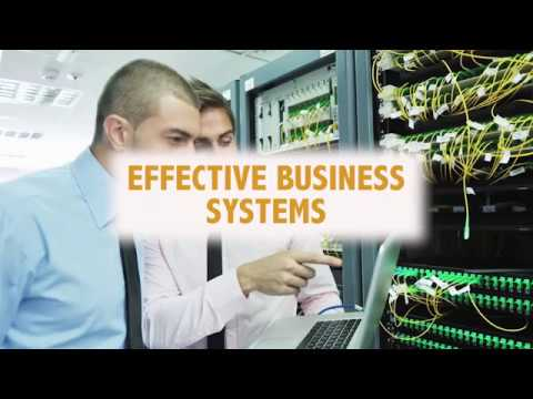 Effective Business Systems