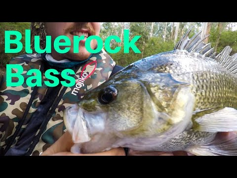 Bluerock Lake Fishing, Australian Bass And Redfin