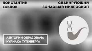 Константин Ельцов - На что способен сканирующий зондовый микроскоп