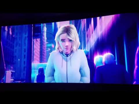 Spider Man into the spider verse meet Gwen Stacy