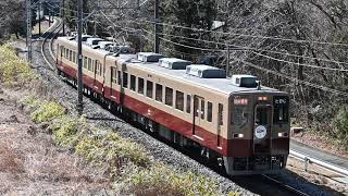 東武6050型リバイバルカラー臨時列車
