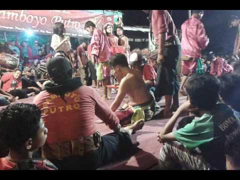 Samboyo putro dangdut live gedangan sidoarjo