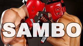 Baixar SAMBO : L'arme secrète de Khabib Nurmagomedov et Fedor Emelianenko !