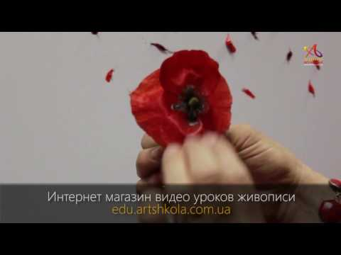 Видео урок живописи Елены Ильичевой - Маковый цвет