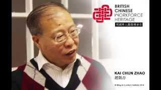 Healthcare: Kai Cun Zhao (Audio Interview)
