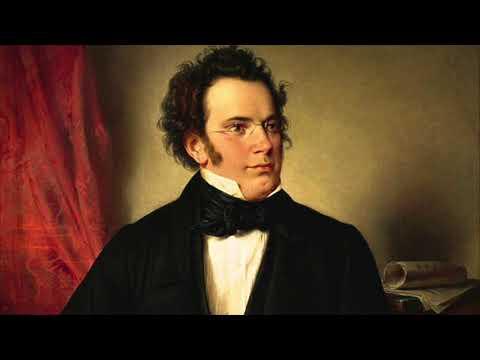 F. Schubert - Wanderer-Fantasie (D.760) - Nicholas Harris