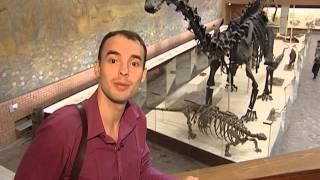видео Музей Дарвина в Москве