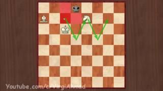 vuclip Permainan Akhir Catur - Raja VS Raja, Kuda, dan Gajah (W Manouvere)