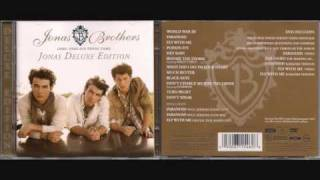 Jonas Brothers Fly With Me  (digital dog radio edit)