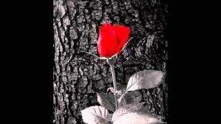 Бони & Тони Стораро - Няма възраст любовта