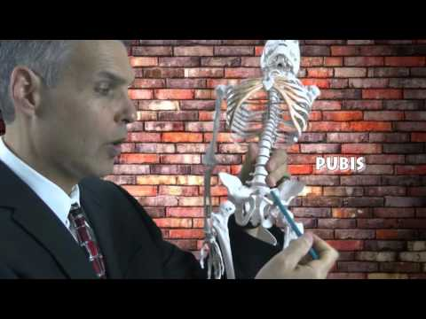 Hip Fracture After Indiana pedestrian accident | Indiana accident lawyer