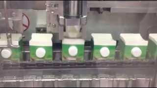 Autometic Milch Gable-top-Karton-Füllmaschine BW-2500