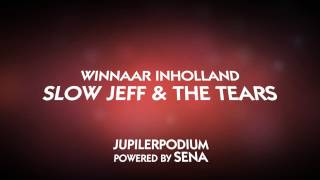 Animatie - Teaser Bevrijdingspop Haarlem 2013