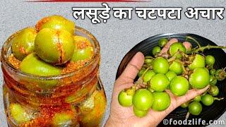 लसूड़े का चटपटा अचार जो सालों खराब न हो | Lasode ka Achar | Gunde Pickle