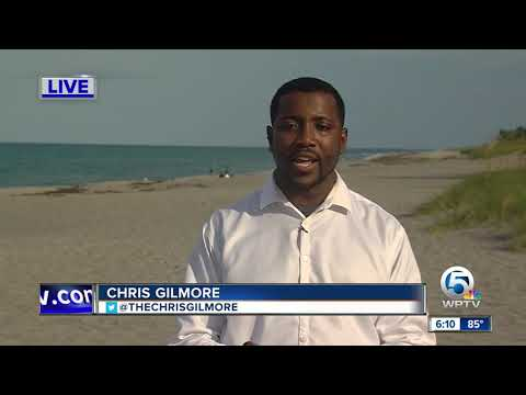 The Mo & Sally Show - Gator Found On The Beach In Hobe Sound