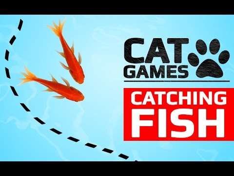 CAT GAMES - CATCHING FISH (VIDEOS FOR CATS TO WATCH)