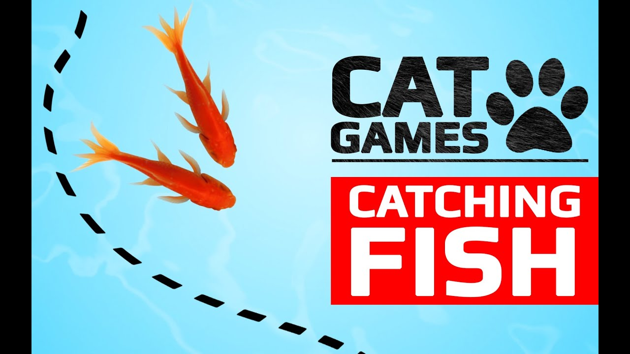 <b>CAT</b> GAMES - CATCHING <b>FISH</b> (ENTERTAINMENT VIDEOS FOR ...