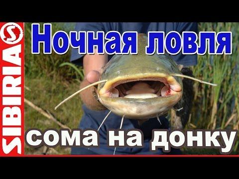 Ночная рыбалка на сома Ловля сома на донку Рыбалка на средней волге