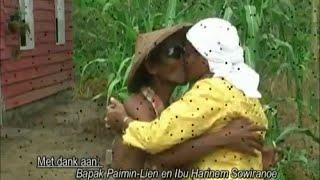 pak'e macul (papah nyangkul) - pop jawa suriname