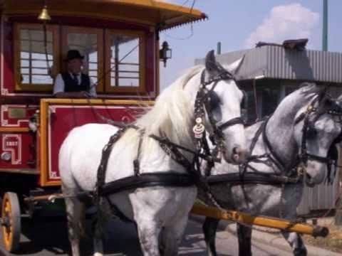Cantecele - Hei, tramvai !