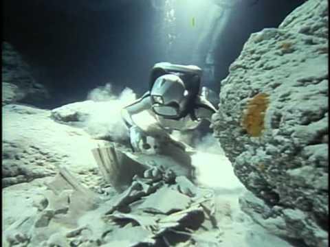 Смотреть фильмы онлайн подводная одиссея команды кусто коралловые джунгли