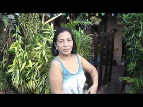 Filipina Woman  Venus - Filipino Neighbors - Tropical Plants -Philippines
