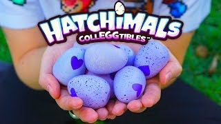Hatching Hatchimals Colleggtibles thumbnail