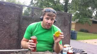 Argo Tea Hibiscus Tea Sangria Review