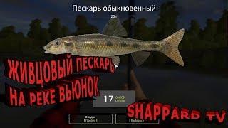 Російська рибалка 4 .Де ловити піскаря на р. Берізка?