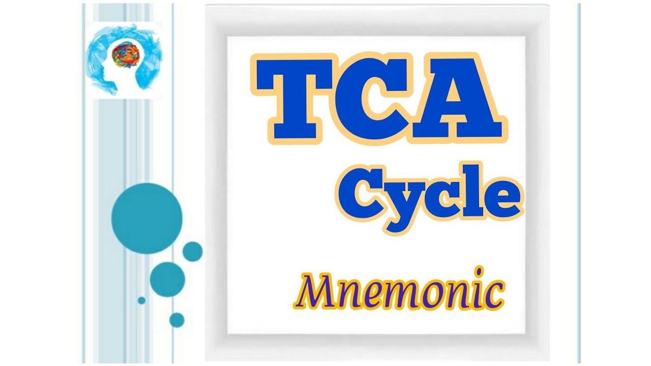 Urea Cycle mnemonic!! #biochemistry #mbbs #science #