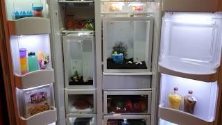 Idea fish tank in coex aquariu…