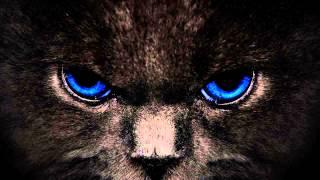 Danny Howells - Black Cat (Original Mix)