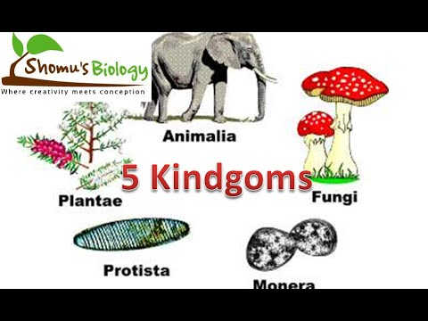NCERT biology class 11 Five kingdom classification of living organisms CBSE class 11